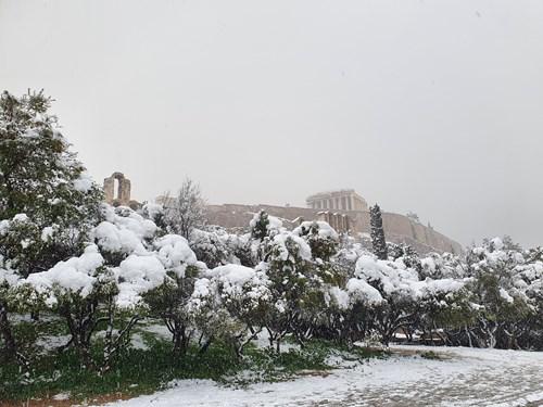 Εξορμήσεις των μαθητών μας στην κατάλευκη Αθήνα